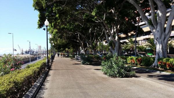 Foto 01 - Avenida De Anaga