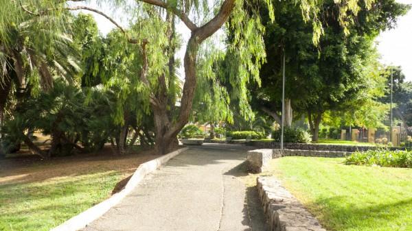 Foto 02 - Parque Viera Y Clavijo