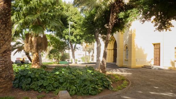 Foto 04 - Parque Viera Y Clavijo